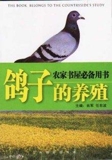 社会主义新农村建设实验用书 鸽子农村养殖图片