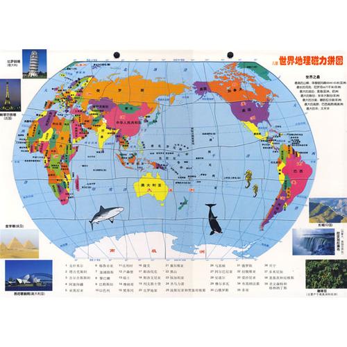 儿童世界地图磁力拼图