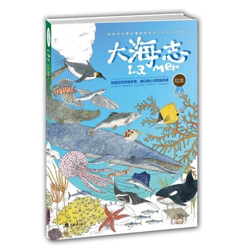 水彩大海动物画