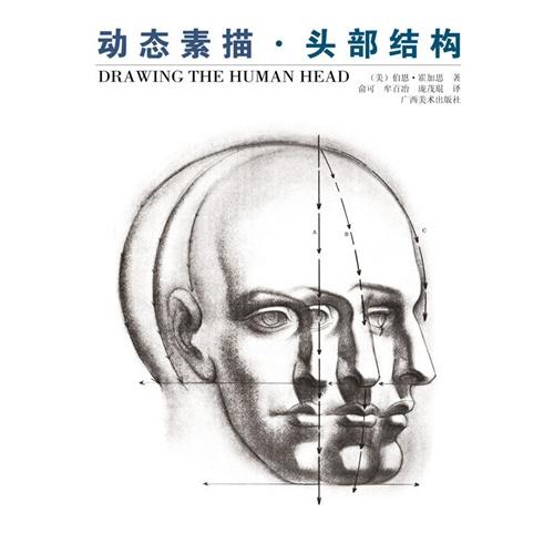 动态素描—头部结构