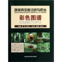 蔬菜病虫害诊断与防治彩色图谱