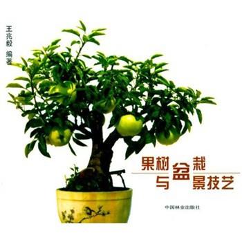 生活百科 宠物/花草 >> 果树盆栽与盆景技艺  分享到: 商品编号