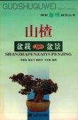 果树趣味园艺丛书--山楂盆栽与盆
