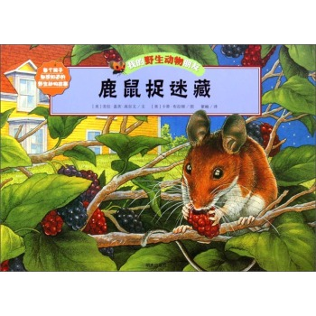 鹿鼠捉迷藏-我的野生动物朋友