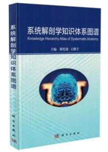 系统解剖学知识体系图谱