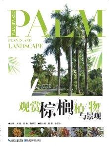 观赏棕榈植物与景观