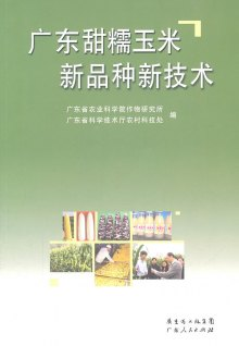 广东甜糯玉米新品种新技术