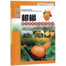 图说柑橘避雨避寒高效栽培技术