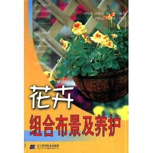 花�组�布景�养护