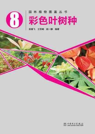 彩色叶树种